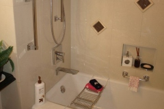 Remodeling Bathroom in North Phoenix